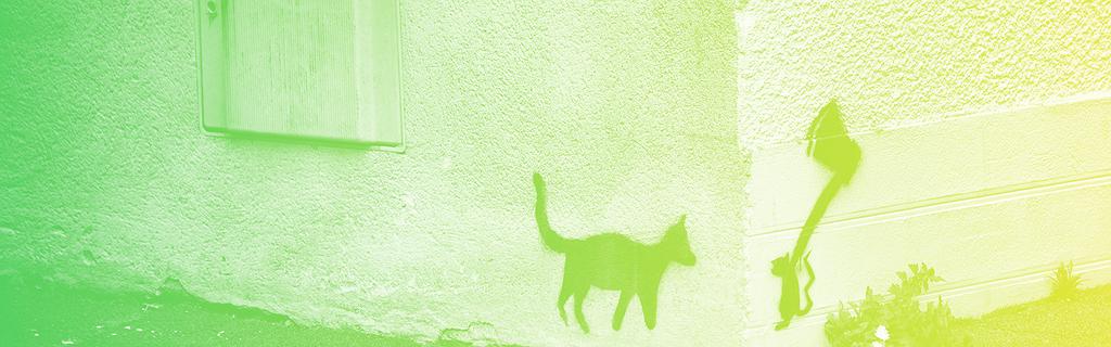 Flickr / Carlo Scherer