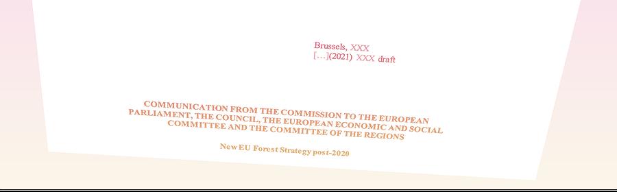 Stratégie européenne sur les forêts